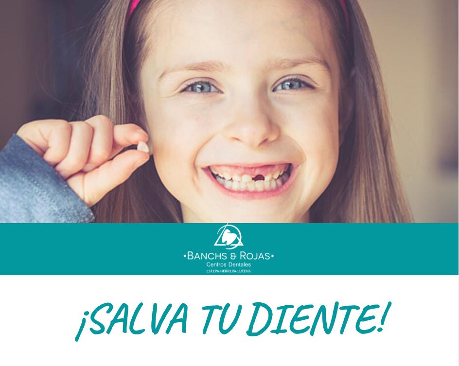 Cómo actuar ante un traumatismo dental en un niño